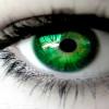 Кареглазая,зеленоглазая….